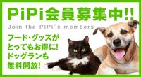 PiPi会員募集中